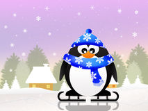 Penguin skating on ice Stock Photo