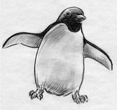 Penguin sketch. Hand drawn pencil sketch of a penguin bird with its wings spread Royalty Free Stock Photo