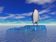 Penguin and sky blue Royalty Free Stock Image