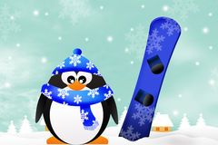 Penguin with snowboard Stock Photos