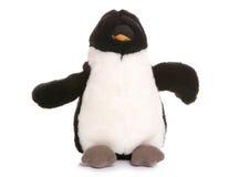 Penguin soft toy. On white background Stock Image