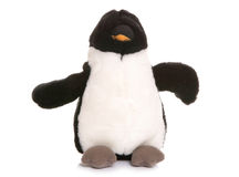 Penguin soft toy Stock Image