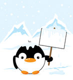Penguin on the South Pole Stock Image