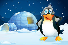 A penguin standing near the igloo Royalty Free Stock Images