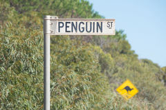 Penguin Street road sign. Road sign identifying Penguin Street with an additional sign warning of kangaroos crossing the road on Kangaroo Island in South Royalty Free Stock Photos