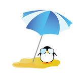 Penguin sweet and cute with sunglass vector illustration Royalty Free Stock Images