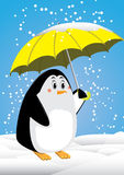 Penguin and umbrella. Snowing in antartica Royalty Free Stock Photography