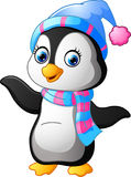 Penguin use a shawl and hat cap Royalty Free Stock Photos