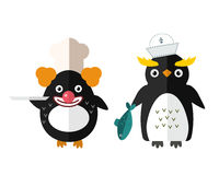 Penguin vector animal character illustration. Stock Images