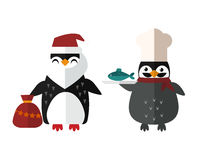 Penguin vector animal character illustration. Royalty Free Stock Photography