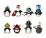Penguin vector animal character illustration. Stock Image