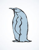Penguin. Vector drawing Royalty Free Stock Image