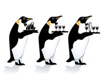 Penguin waiter. Tree penguin waiter, restaurant serve Stock Photos