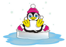 Penguin in warm hat and gloves Royalty Free Stock Photos