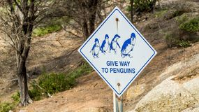 Penguin warning traffic sign royalty free stock photo