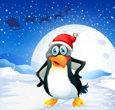 A penguin wearing Santa's hat Stock Photography