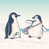 Penguin. Winter illustration with funny cartoon penguin family.  Father,mother and baby. Vector Stock Image