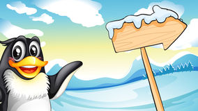 A penguin beside the wooden arrow signboard Royalty Free Stock Photo