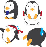 Penguin work out Stock Photography