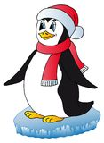 Penguin with Xmas cap Stock Photography
