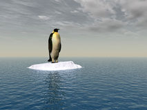 千兆瓦penguine 库存图片