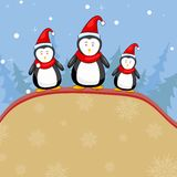 Penguine in Christmas Backgound Stock Photography