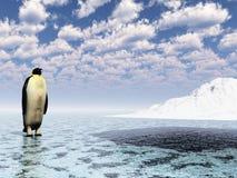Penguine_gw Stock Images