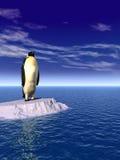 Penguine_gw Royalty Free Stock Image