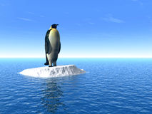 Penguine_L Royalty Free Stock Photos