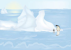 Free Penguins Stock Images - 12210344
