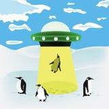 Penguins royalty free illustration