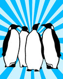 Penguins. Stylized illustration of a group of penguins Royalty Free Stock Photography