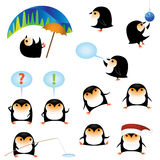 Penguins. Collection of funny cartoon penguins Stock Image