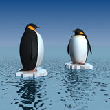 Penguins Royalty Free Stock Image