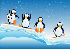 Penguins. Cartoonstyle illustration of penguins on blocks of ice Stock Image