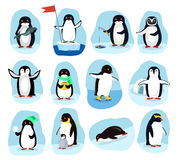 Penguins Daily Activities Posters Cartoon Set Royalty Free Stock Images