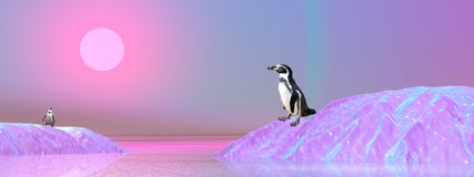 Penguins in Antarctica. Two penguins walking on icebergs by violet sunset Royalty Free Stock Images