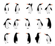 Penguins background Royalty Free Stock Images