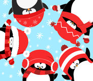 Penguins Celebrating Christmas Stock Images
