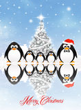 Penguins at Christmas Stock Image