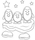 Penguins coloring page Stock Photography