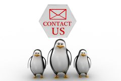 Penguins with contact us concept Stock Photography