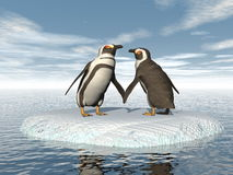 Penguins couple - 3D render Stock Image