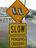 Penguins crossing. A Roadsign near a Penguin colony in Oamaru,New Zealand Stock Image