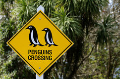 Penguins crossing. Traffic sign in rural New Zealand stock photo