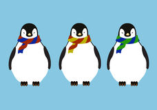 Penguins Stock Photography