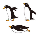 Penguins with different poses Stock Photos