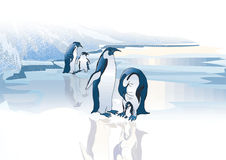 Penguins family Stock Photography