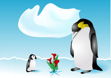 Penguins and flowers Royalty Free Stock Images