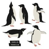 Penguins Geometric style Wild animals. Set Royalty Free Stock Photo